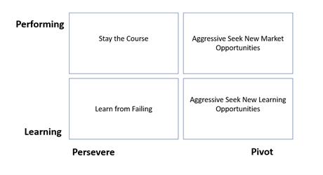 persevere-pivot